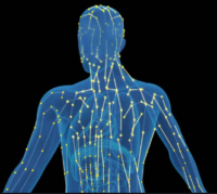 The Five Elements in Acupuncture Treatment